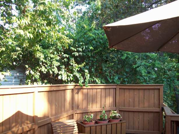 Build wooden deck railing bench plans diy pdf woodworking for Privacy planters for decks