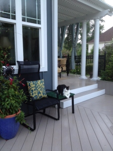 St Louis Mo Deck And Porch Design With Your Pets In Mind