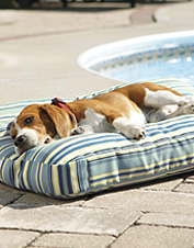 Water Shed Outdoor Dog Bed, photo by Orvis