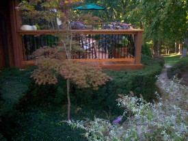Rustic Cedar Deck with Metal Balusters, St. Louis Mo, by Archadeck