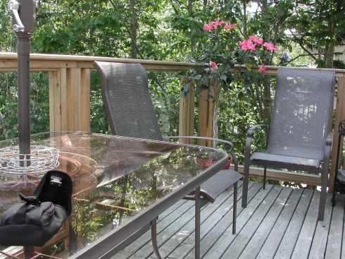 Glass Panels for Deck Rail, Project by Archadeck
